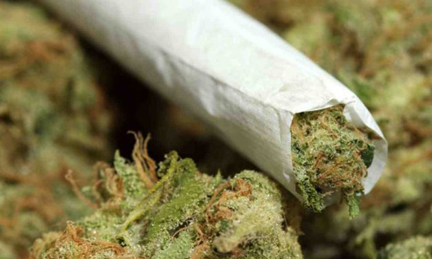 6 Best Books To Read When Under The Influence Of Marijuana