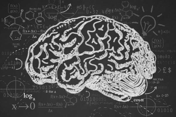 Basic Books on Cognitive Science to Help You Understand Your Mind