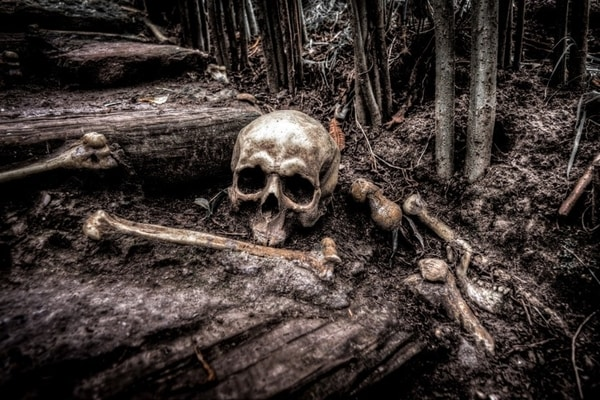 10 Best Horror Books Of 2020 With A Psychological Twist